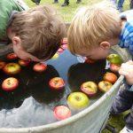 apple-bobbing-boys